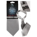 Fifty Shades of Grey Christian Greys Tie